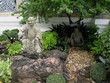 Giardino cinese 2