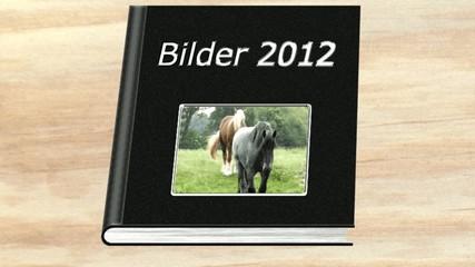 Bidler 2012