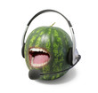 Watermelon Deejay 2