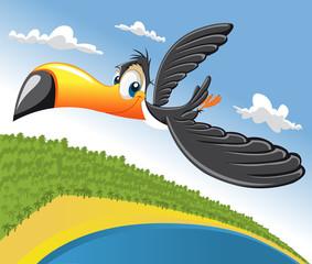 Cartoon toucan flying over beach in Brazil