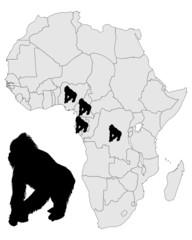 Afrika Gorilla Verbreitung
