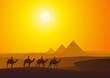 Fototapeten,wüste,pyramiden,pyramiden,kairo