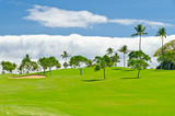 Golf place with green and blue sky view