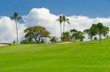Tropical golf place with green and beautiful blue sky view