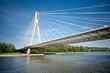 Modern bridge over river