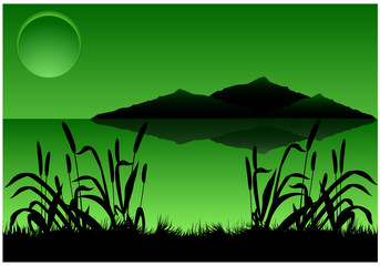 Dark green landscape