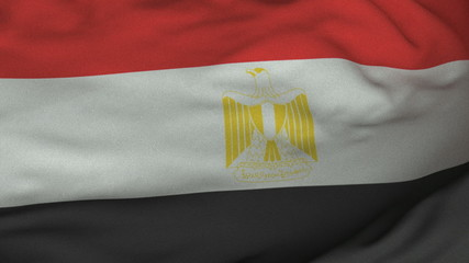 Seamless Waving Egyptian Flag with Fabric Texture