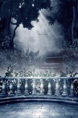 Enchanted Calm