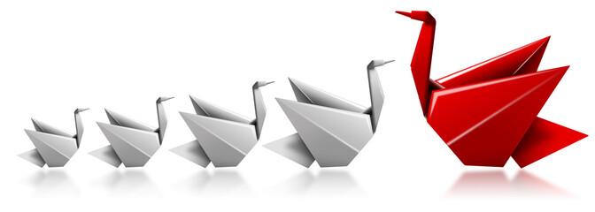 Swan leader metaphor