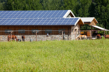 Solar Ranch