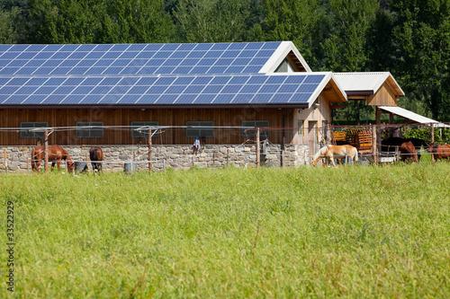 Solar Ranch - 33522929