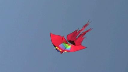 Aquilone in volo