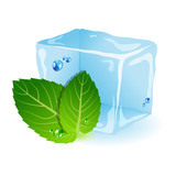 Mint with ice