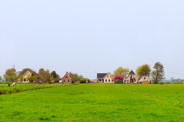 Farmhouses in Holland