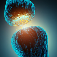 Synaptic transmission , 3d illustration