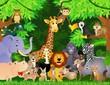 Fototapeten,urwald,tier,safarie,spaß