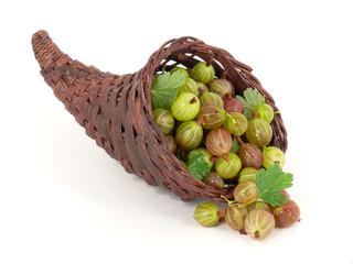 Füllhorn mit Stachelbeeren gefüllt