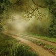 Mglista sceneria z wiejską drogą