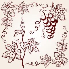 Set from vine