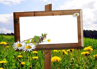 Holz Schild Tafel Kräuter Blumen Wiese