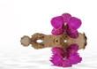 Orchidee schwimmt
