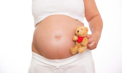 schwangerschaft bär