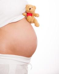 bär schwanger