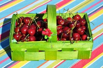 Kirschen im grünen Spankörbchen