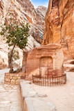 Ancient tomb in canyon Siq,  Petra