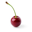Single ripe cherry