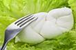 Mozzarella with fork on salad