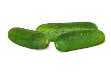 Gemüse 276