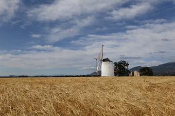 Moulin à farine et champs de blé