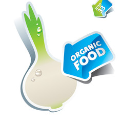 Icon white onion with arrow by organic food. Vector illustration