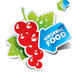 Icon currant with arrow by organic food. Vector illustration