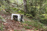Fly-tipping In Forest Environmental Pollution