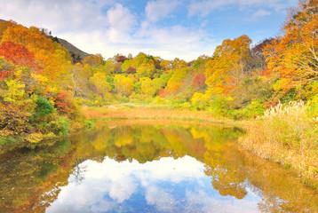 紅葉の秋A