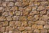 Close up of old stone wall with alga in sunshine poster