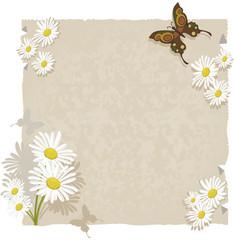 Papel com margaridas e borboletas