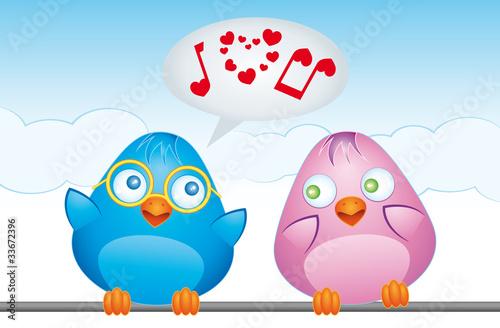 "blue bird sings ""i love you"" to birdfriend"