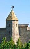 Old fortress. The city of Pskov. Russia poster