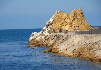 Catalina Island Rock