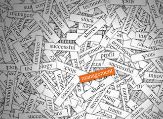 Magnetic Word Labels - Management