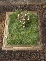 cornice con piante