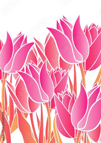 Plexiglas Roze グラフィックパターン