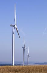 rangée d'éoliennes et champ de céréales