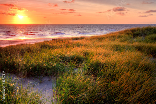 Seaside with sand dunes at sunset - 33717319