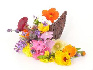 Blütenlese im Füllhorn