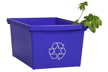 Recycling bin with plant