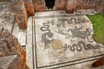 Ancient Roman Baths of Neptune Mosaic Floors Ostia Antica Rome I